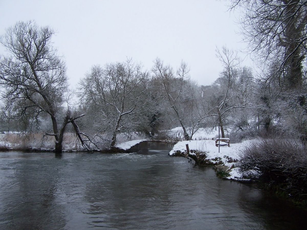 Millpond in the snow